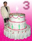 Торт бутафорский круглый
